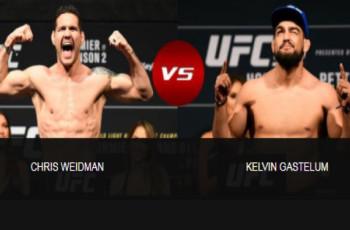 Brasileiros dominam bônus de performances do UFC Long Island